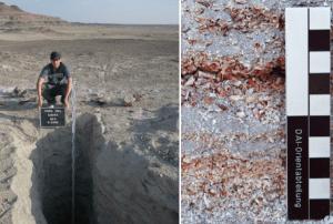For 5000 år siden var Sahara og Arabien varmere, vådere med vild flora og fauna