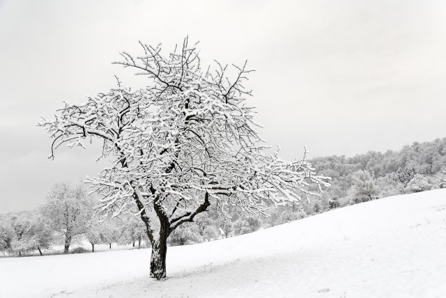 Bliver det koldere?